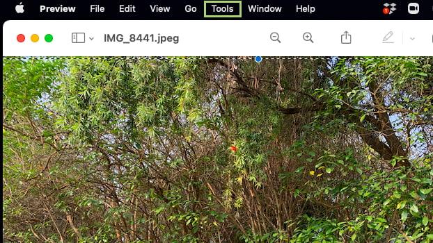 كيفية تغيير حجم الصور واقتصاصها باستخدام Preview على الماك 11